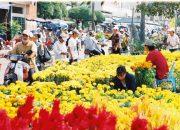 Miêu Tả Cảnh Chợ Tết Quê Em | Văn Mẫu Chọn Lọc