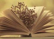 Văn Học Làm Cho Con Người Thêm Phong Phú … / M.L.Kalinine